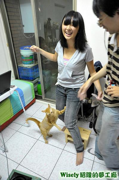 ChiuChiu抓赤貓