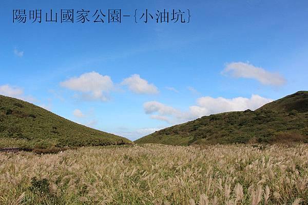 陽明山國家公園-{小油坑}