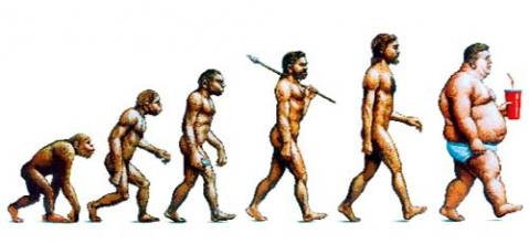 fat_evolution.jpg