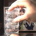 snapshot20081117101023.jpg