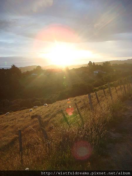 農場的夕陽