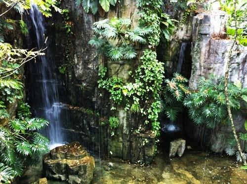植物園內有座小型人工瀑布