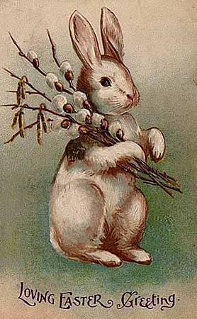 Easter_Bunny_Postcard_1907.jpg