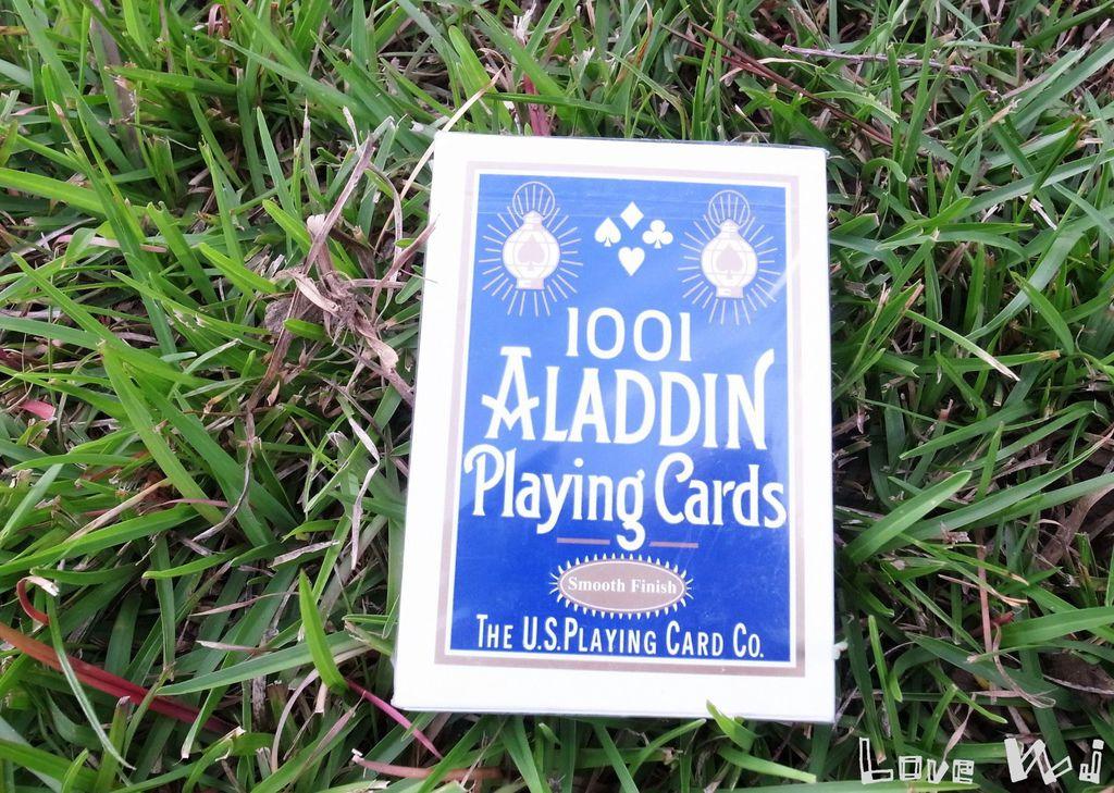 ALADDIN1001 2