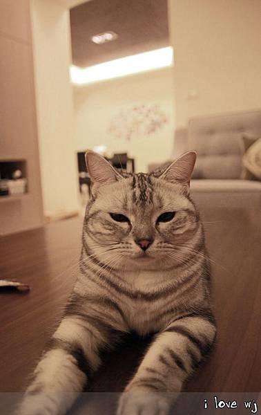 13.11.02 CAT05