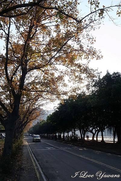 2014_01_01 石門水庫01.jpg