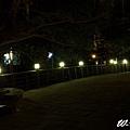 地熱谷 2014_02_02 23