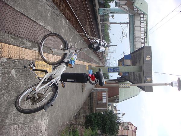 DSC09883.JPG