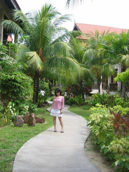 @ Laguna Redang Island Resort