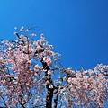 nEO_IMG_56.jpg