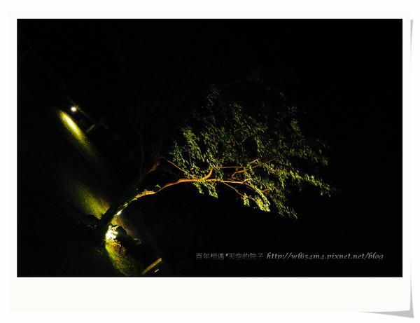 DSC_7138_nEO_IMG.jpg