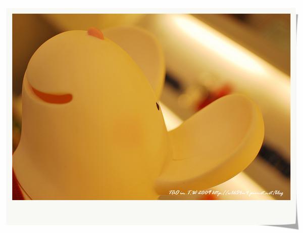 DSC_0322_nEO_IMG.jpg