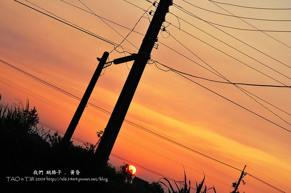 DSC_9889_nEO_IMG.jpg