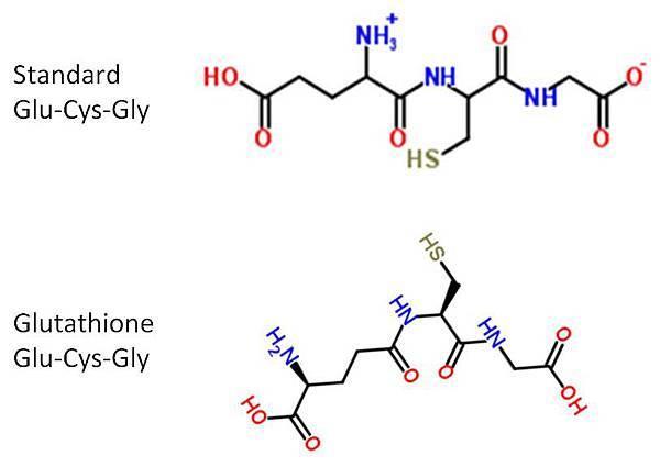 Glu-Cys-Gly 2 form