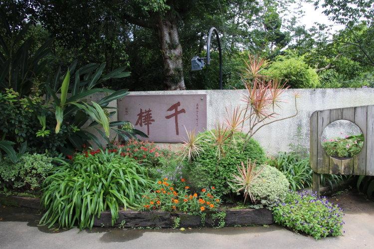 千樺花園 百花盛開 蝴蝶飛舞 悠閒的美好時光