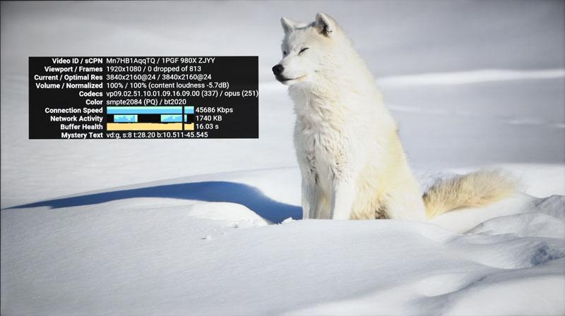 57-video_demo01.jpg