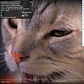 t13-video4k_youtube.jpg