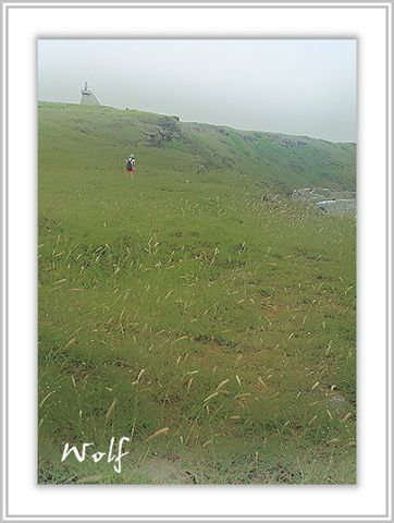 IMG_6671-1-1.JPG