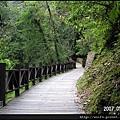 25-杉木橋