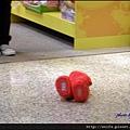 14-大笑Elmo