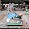 06-華美金鳳鳥