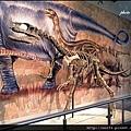 51-三疊紀肉食恐龍