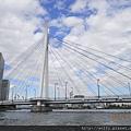 DSCN-2292-中央大橋.JPG