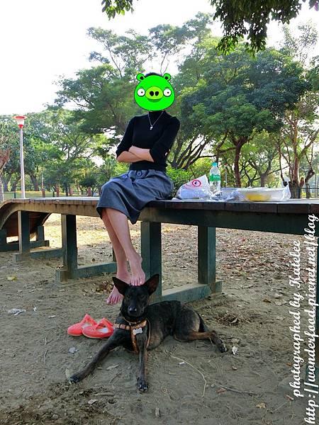 PhotoCap_315-1.jpg