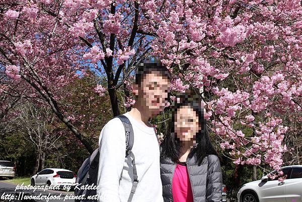 PhotoCap_769-1.jpg
