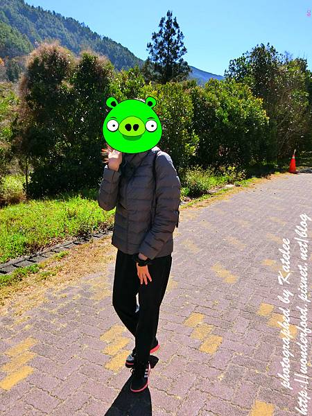 PhotoCap_526-1.jpg
