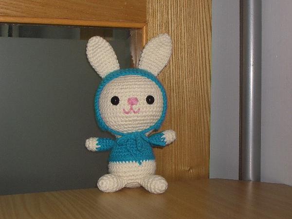 相約鈎暖暖兔~送給癌童的暖暖禮物(By黛娜的家)73號暖暖兔完工啦!
