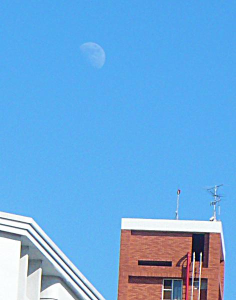 白天的月亮