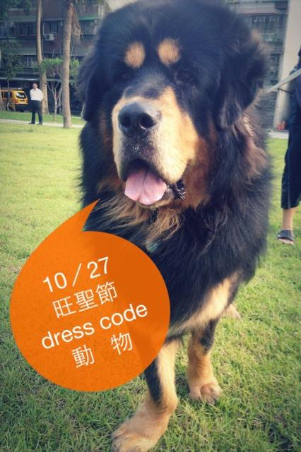 旺聖節dress code