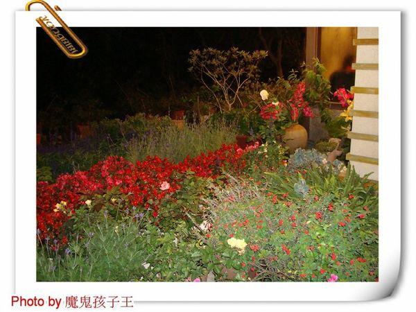 函館DSC02203.jpg