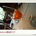 DSC06179.jpg