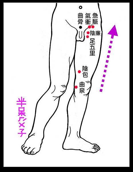 6-3.jpg