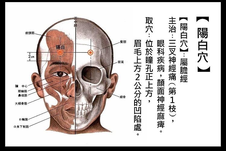 1-3(S).jpg