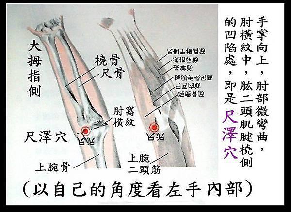 2-6(S).jpg