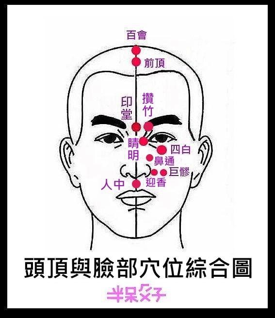 1-0(頭部穴位綜合圖).jpg