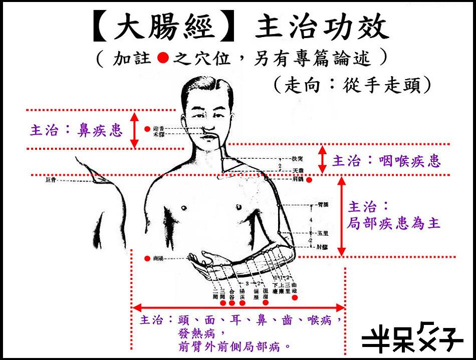 ●2大腸經.jpg
