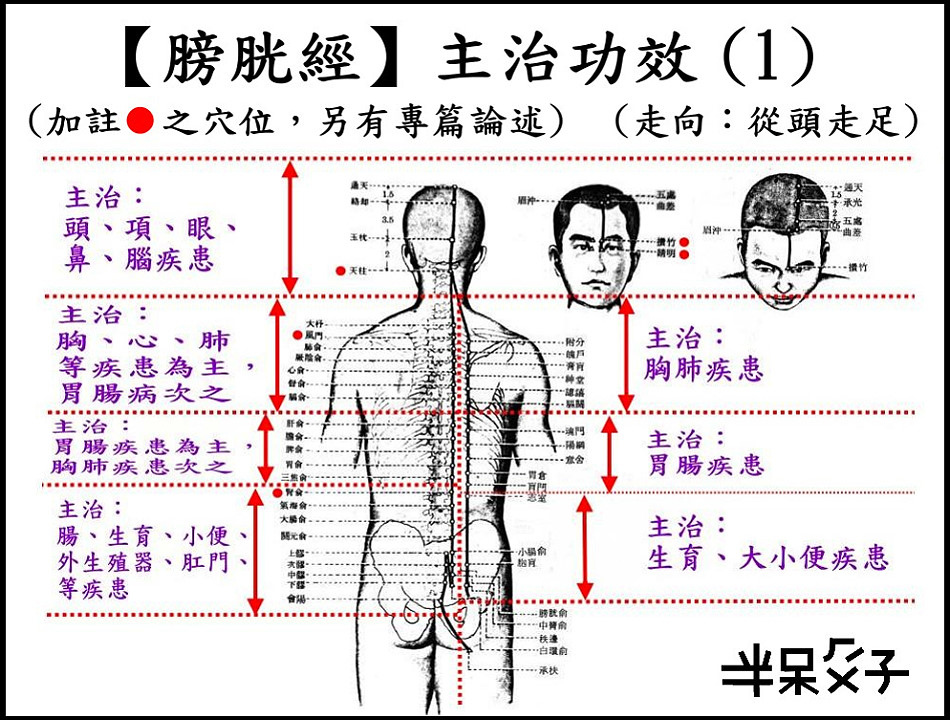 ●7-1膀胱經-1.jpg