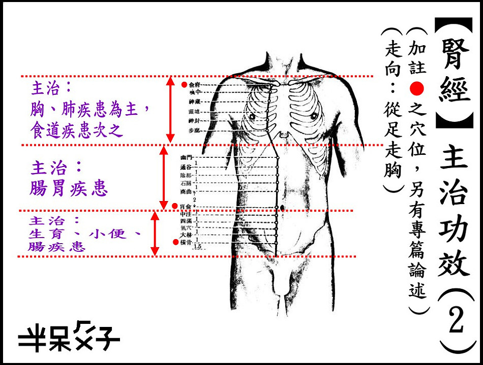●8-2腎經-2.jpg
