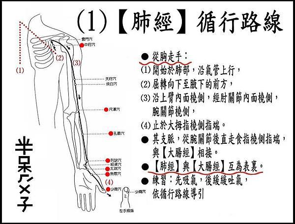 ●(1)肺經.JPG