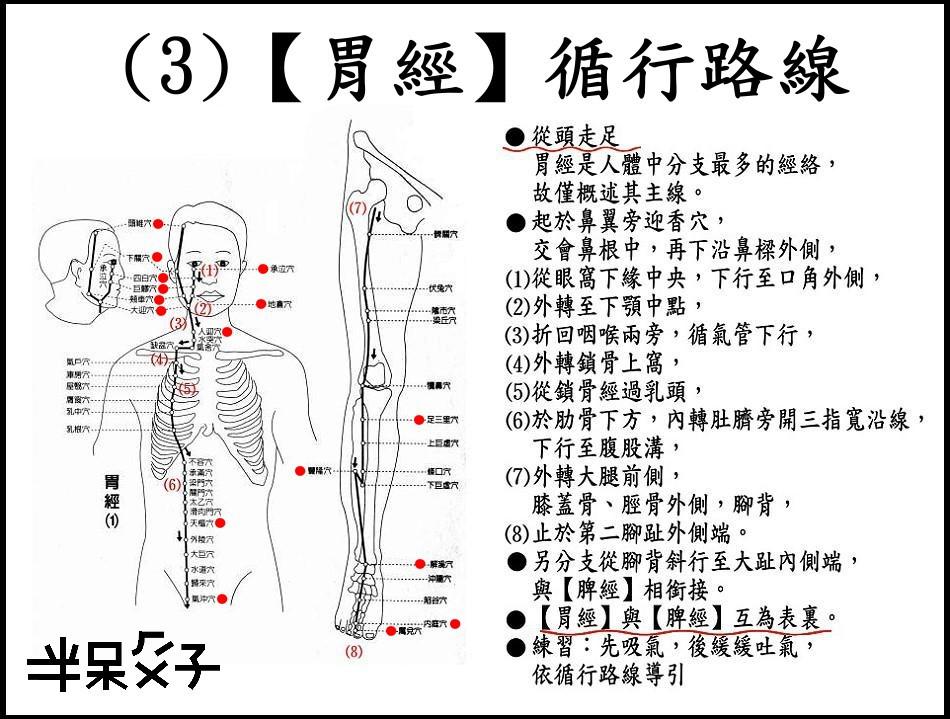 ●(3)胃經.jpg