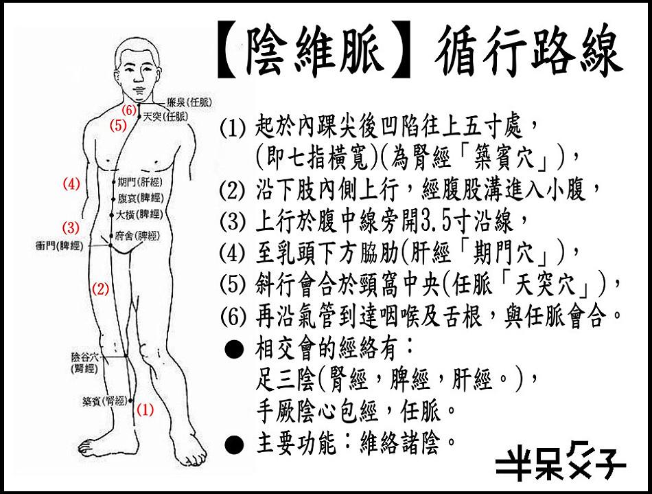 ●8陰維脈.JPG