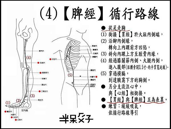 ●(4)脾經.jpg