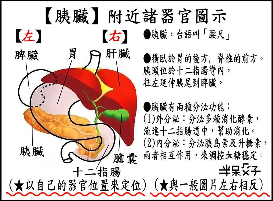 ●B-圖1.jpg