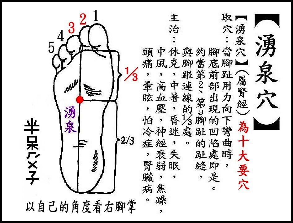 ●E11湧泉(腎經).jpg