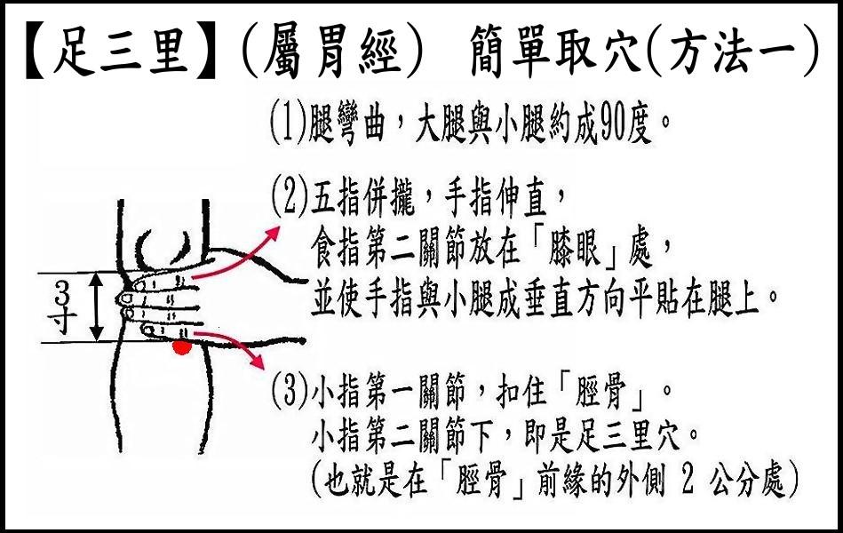 ●E9-1足三里(胃經).jpg