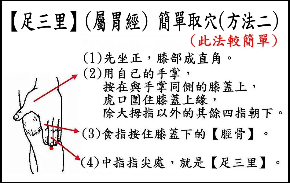 ●E9-2足三里(胃經).jpg